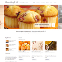 Premium Web site Sample 06